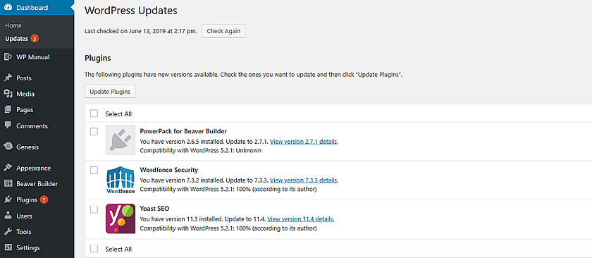 Screenshot of WordPress Updates page